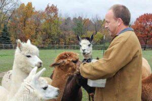 Houchin-Alpaca-Farm-014