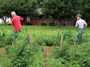 Volunteers work in the Farm Service garden in Springfield.