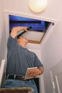 inspect-attic
