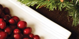 cranberries with decorations