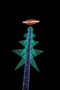 BlackDiamond-Christmas-124