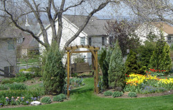 Spring bulbs add the season's first color to this garden.