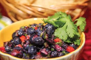 BlueberrySalsa