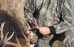 Prairie State bowhunting