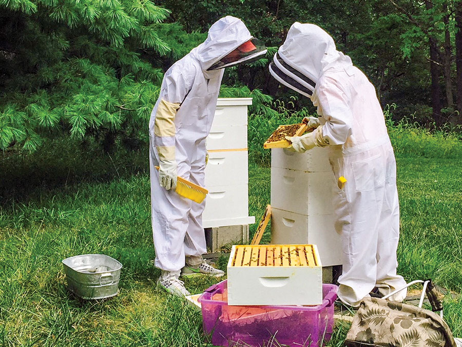 Beekeeping for Bee-ginners