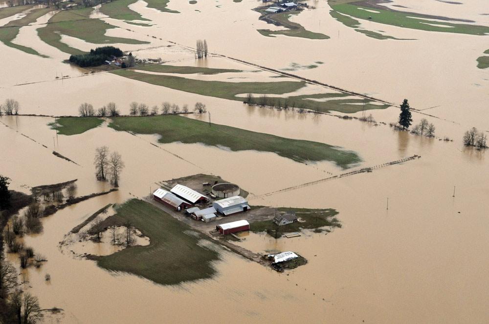 Flooded farmland