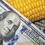 Rural Economic challenges