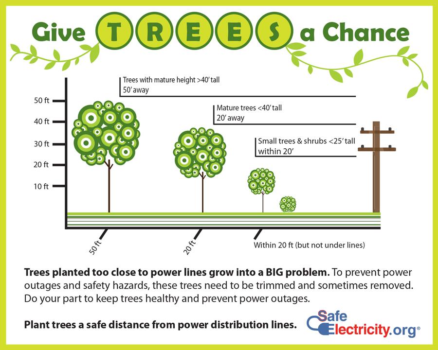 TreePlantingGraphic