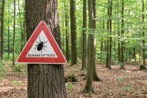 Beware of ticks