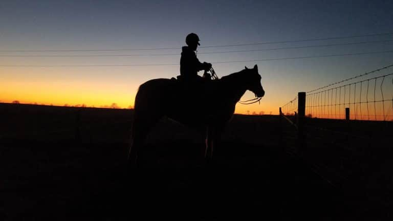 horse and rider silhouette and sunset.